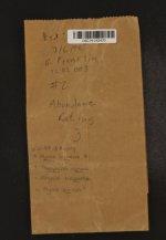 Phaeophyscia nigricans image