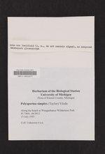 Polysporina simplex image