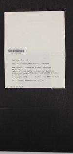 Lathagrium fuscovirens image