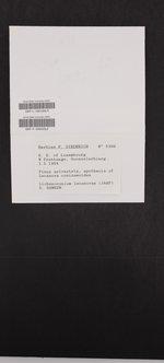 Lichenoconium lecanorae image