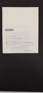 Placynthiella oligotropha image